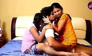 Desi townsperson bhabhi sex in hotel room